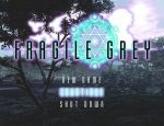 「FRAGILE GREY」の紹介とSSG